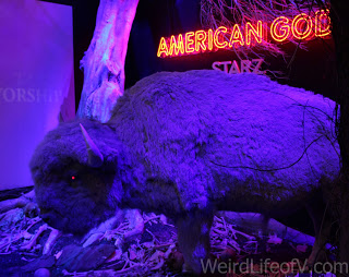Buffalo in the American Gods booth on the exhibition floor at SDCC 2016