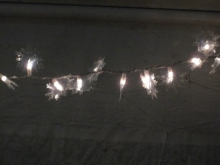DIY Snowflake lights lit up at the party