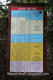 Geologic Time Chart sign at the Prehistoric Gardens