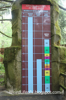 Chart of Annual Rainfall