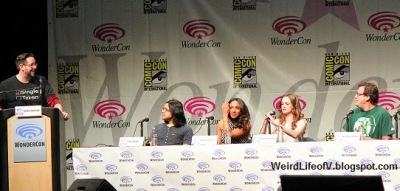 Carlos Valdes, Candice Patton, Danielle Panabaker, and Andrew Kreisberg - WonderCon 2015 The Flash Panel
