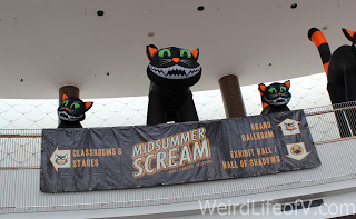 Inflatable black cats welcome you over the Midsummer Scream banner