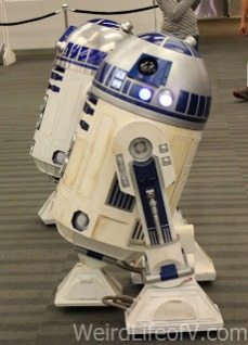 Some R2D2 units built by the droid builders club